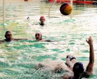 Чемпионат России по водному поло среди женских команд сезона 2016-2017 гг.