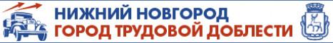Голосуй за Нижний Новгород!